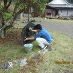 ヤマモモの木周辺の清掃の様子
