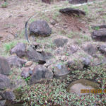大池排水部の様子(清掃前)