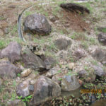 大池排水部の様子(清掃後)
