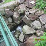 大池の様子(水位調整)