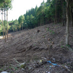 研修施設前庭 池造成中(2013年6月)