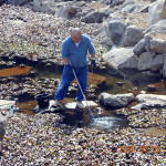 大池の清掃