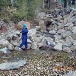 大池の様子(池の清掃)