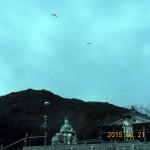 境内上空を飛ぶパラグラーダー