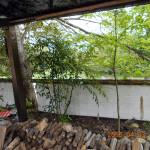 植栽の様子(南天とヤマボクシ)