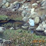 大池の様子(清掃中)