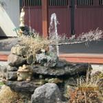 涅槃池の噴水