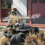 涅槃池の噴水の様子