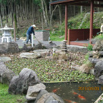 涅槃池周辺の清掃