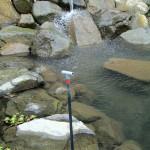 大池(水位調整の様子)