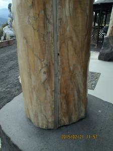 柱の背割り