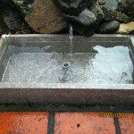水系の様子