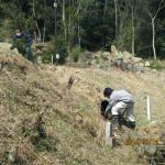 排水路の清掃