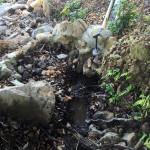 水路の改善