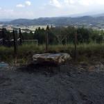 地中からの石(洗って設置)