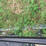 水路系配管の様子