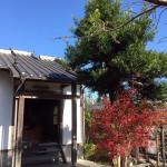 般若寺の木々