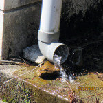排水配管の確認