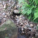 上流からの水量確認