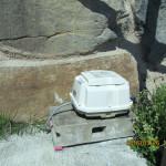 浄化ポンプの補強