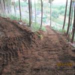 森林組合の作業風景