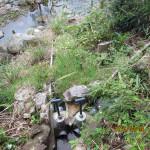 排水溝の確認