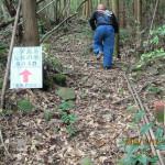 茶群へのルート