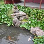涅槃池の様子