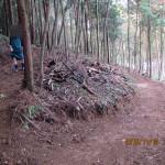 林道の様子