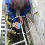 配管の確認(漏れ箇所補修)