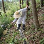排水溝の確認・清掃