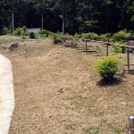 草刈り後の供養塔群