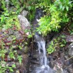 山水の流量の確認