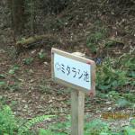 ミタラシ池の入口