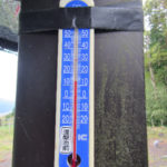 涅槃池前の気温(午前)