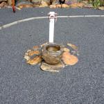 井戸の周辺の様子