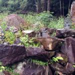 紫光滝付近の状況