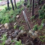 大池上側の水路