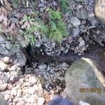上流の水量の確認