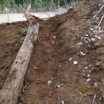 山道の整備