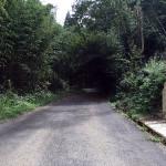 湯ったり館への道