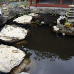 涅槃池飛び石