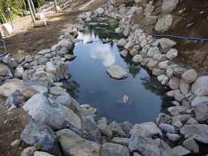 大池が完成しました
