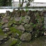 石垣の様子