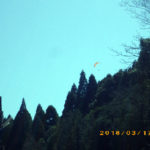 本堂からの景色(パラグライダー)