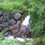 水量の確認の様子