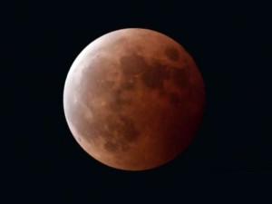 皆既月食20141008