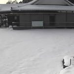 境内の様子(冬景色)