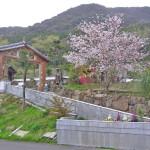 初期の般若寺山門