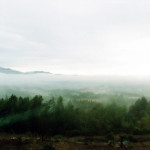 深い霧に覆われる般若寺